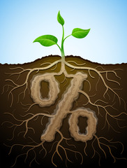 Percent sign like root of plant. Tuber in shape of percentage