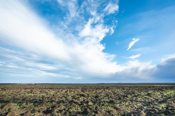 blue sky over ploughed fileld in spring