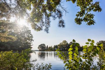 Lake or pond landscape