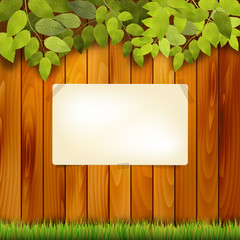 Wooden natural background and paper board for text