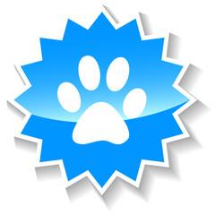 Paw blue icon