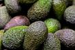 Avocados - 78657099