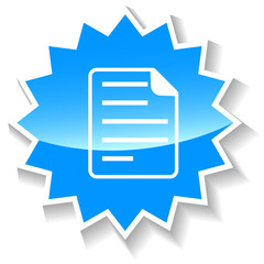 Document blue icon