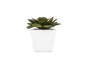 Planta 01
