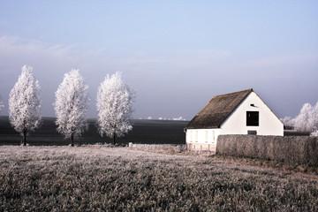 Winterlandschaft - Raufrost auf Bäumen