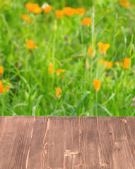 Wooden table on green background