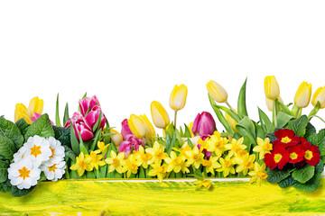 Frühblüher Ostern Hintergrund