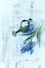 A small vintage watering can and spring flowers