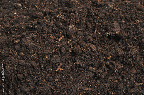 close-up of soil - 78668675