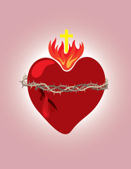 Secret heart, christian icon and symbol, art vector illustration