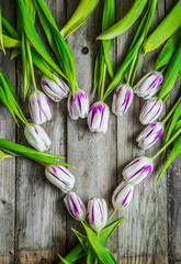 Tulips on wooden background
