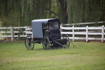 Black Amish buggy