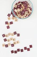 Decide  Your Furture, Words