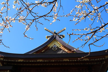 Shrine of plum