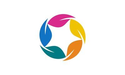 Star Leaf Flower Logo