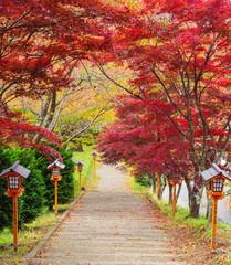 Stairway to chureito pagoda in autumn, Fujiyoshida, Japan