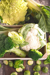 various of cabbage