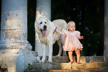А small child with big dog