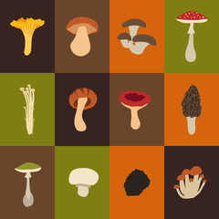Mushroom set with flat design