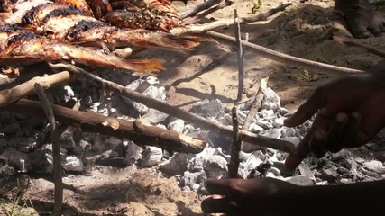 Hands corrects BBQ with fish, Kenya
