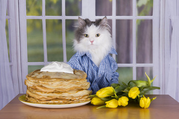 cat wearing a shirt with pancakes and tulips