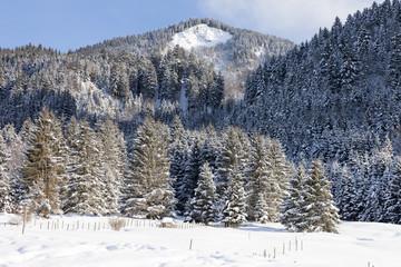 Alps in the snow, Bavaria, Germany