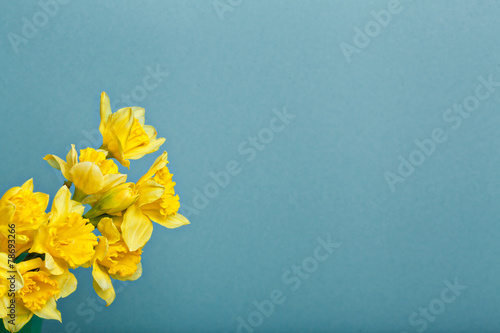 Staande foto Narcis bouquet of narcissus on blue backgroung