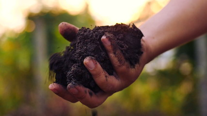 Hand pouring organic soil with sunrise slow motion