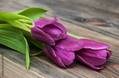 Deurstickers Tulp purple colored tulip flowers