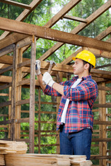 Construction Worker Hammering Nail On Wooden Cabin