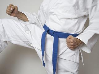 Kampfsport Kämpfer blauer Gürtel Anzug kick