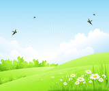 Fototapety Clean spring amazing scenery. Vector illustration