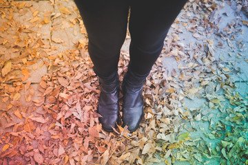 close up of woman legs in dry leaves autumn