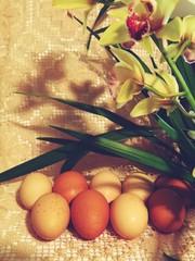Unpainted  egg