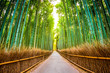 Leinwandbild Motiv Bamboo Forest of Kyoto, Japan