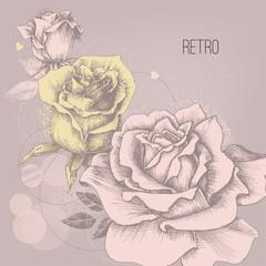 Retro rose background greeting card