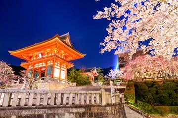 Spring Night in Kyoto, Japan