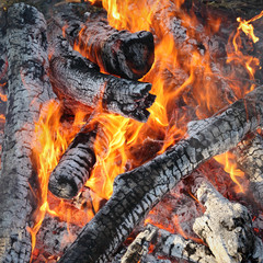 Fire, heap of wooden logs burning outdoor