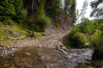 The mountain river in the Carpathians, Ukraine
