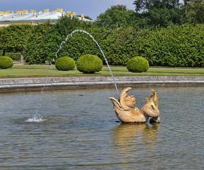 Дельфин.Фрагмент фонтана в Верхнем парке Петергофа.