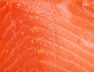 Fresh salmon fish texture