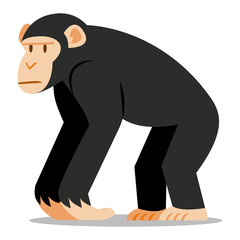 Cartoon Chimp Isolated On Blank Background