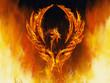 phoenix - 78714652