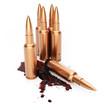 Постер, плакат: Rifle cartridges with blood