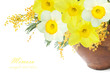 Mimosa and narcissus flowers bunch isolated