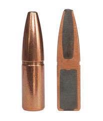 Bullet and its cutaway
