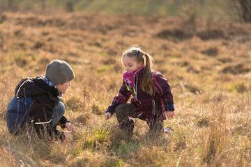 Two little children playing together on a meadow