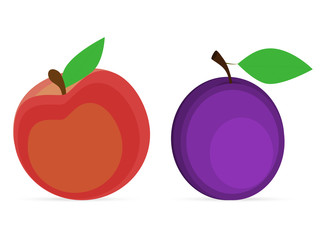 plum and peach on a white background