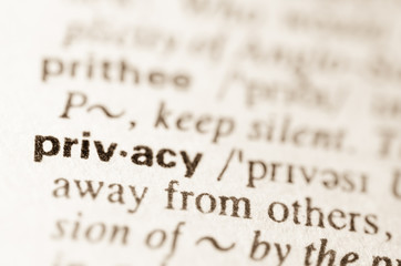 Dictionary definition of word privacy
