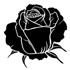 Silhouette of rose bud